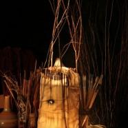 Julie's Lamps